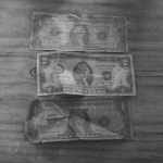 Zim dollar
